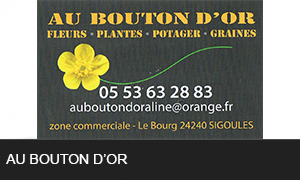 Au bouton d or